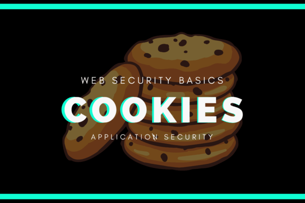 What are cookies and why are they used? basics of web security